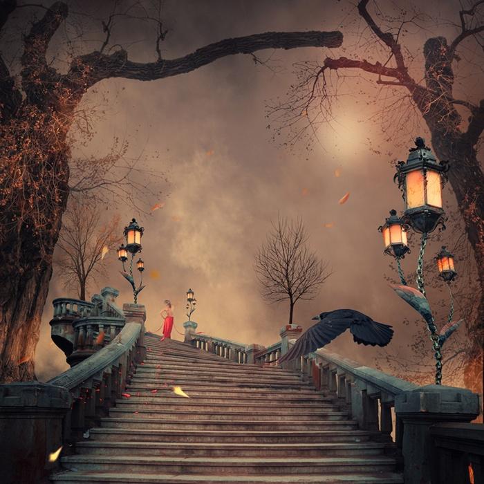 Лестница в небеса. Фотохудожник  Караш Йонуц (Caras Ionut).