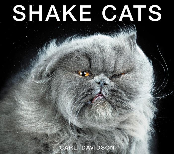 Фото-проект «Shake Cats» от фотографа Карли Дэвидсона (Carli Davidson).