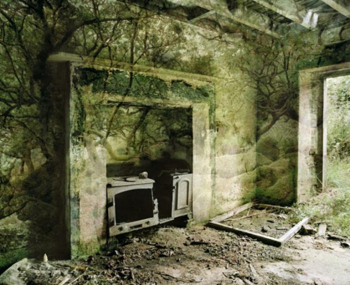 Царство. Священная роща (Realm V. The Sacred Grove). Автор работ: Каролин Лефлей (Carolyn Lefley).