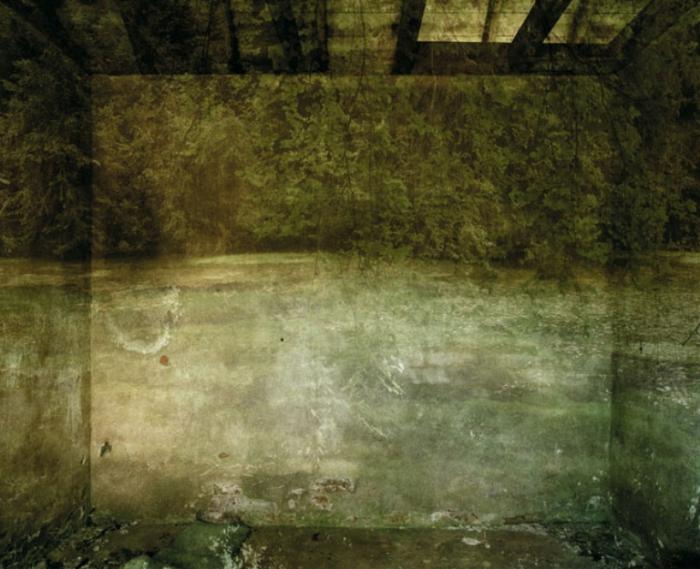 Царство. Тихий бассейн (Realm VII. The Silent Pool). Автор работ: Каролин Лефлей (Carolyn Lefley).