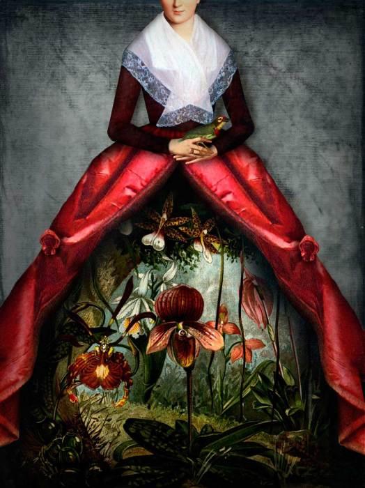 Таинственный сад волшебных цветов. Автор: Catrin Welz-Stein.