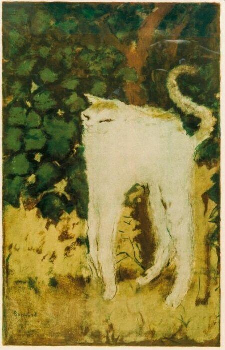 Пьер Боннар – Белый кот. \ Фото: google.com.