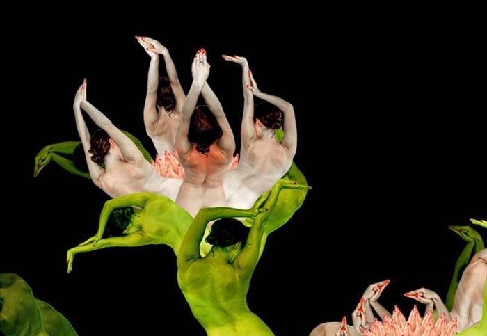 Экзотический цветочек. Автор: Cecelia Weber.
