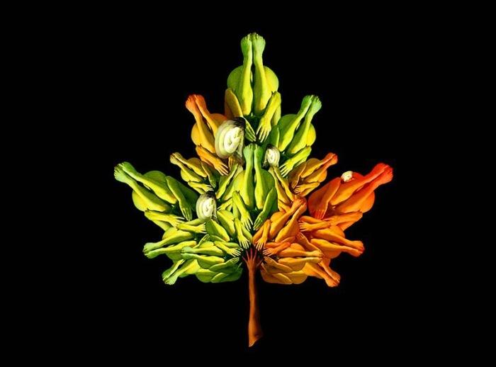 Кленовый листочек. Автор: Cecelia Weber.