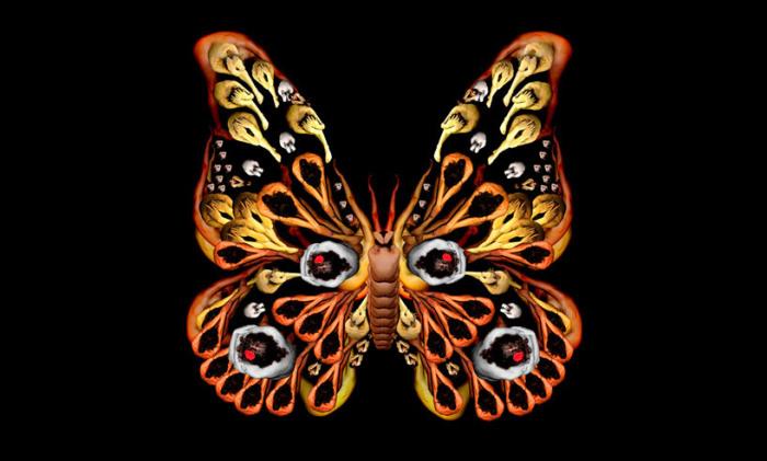 Крылья бабочки. Автор: Cecelia Weber.