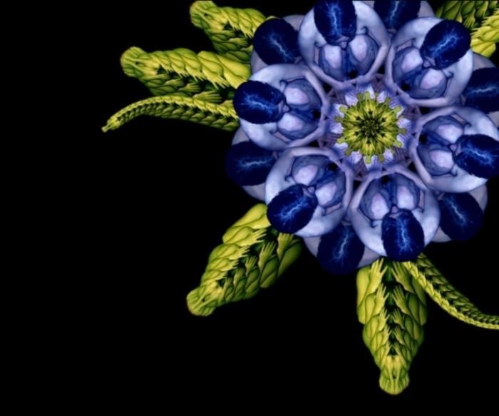 Цветочный калейдоскоп. Автор: Cecelia Weber.