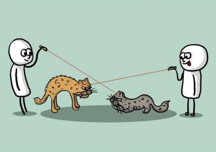 «Нарисуй бойцовых котов». Автор: Chilik.