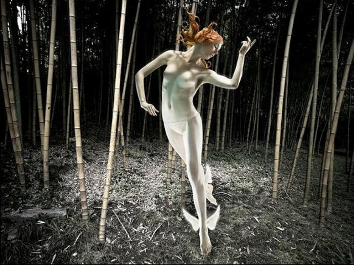 Таинственный бамбуковый лес. Сюрреалистические работы от Christophe Gilbert.