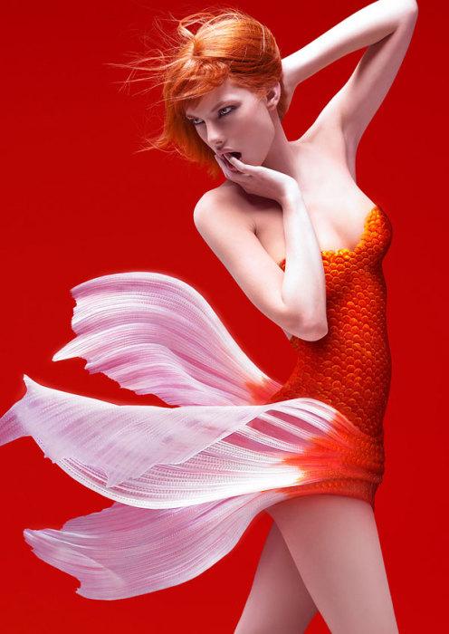 Золотая рыбка. Сюрреалистические работы от Christophe Gilbert.