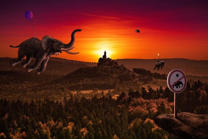 Летающие слоны. Автор: Christophe Kiciak.