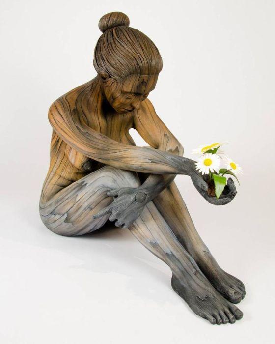 Первые цветы. Автор: Christopher David White.