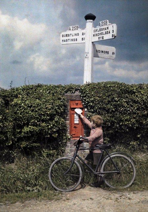 Маленький мальчик бросает письмо в почтовый ящик в живой изгороди, Сассекс.