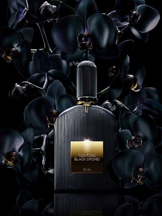 Чёрная орхидея. \ Фото: pinterest.com.