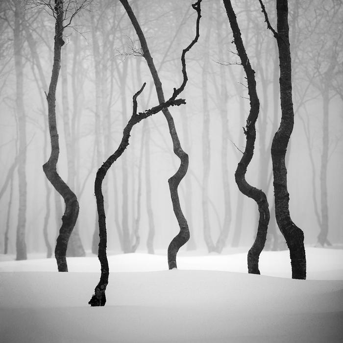 Идеальный пейзаж. Автор: Daniel Rericha.