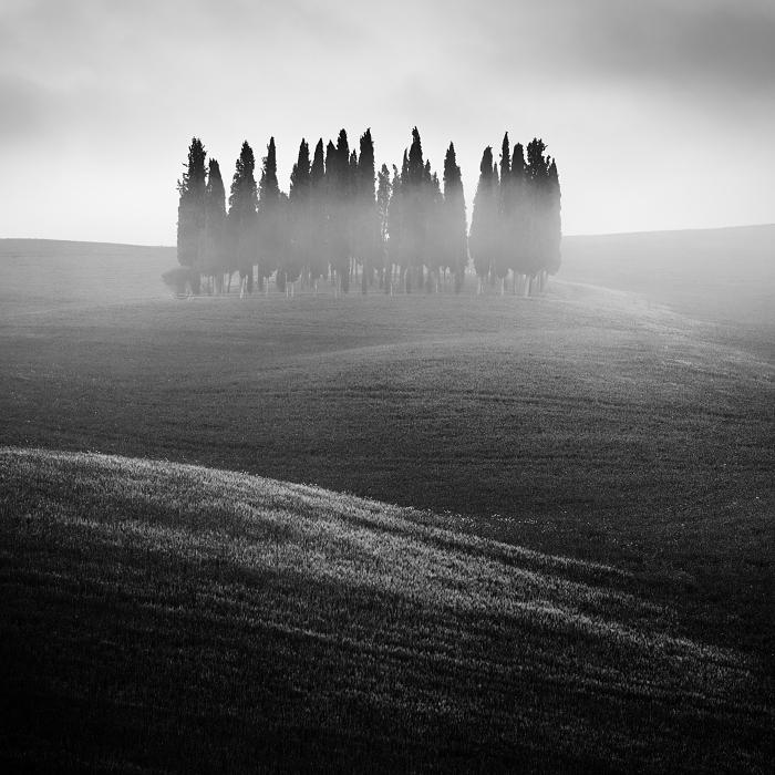 Прекрасная Тоскана. Автор: Daniel Rericha.