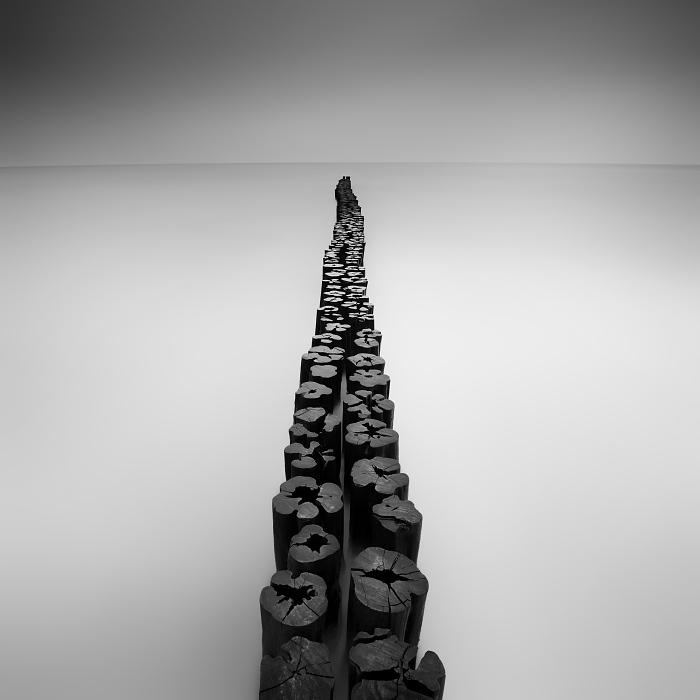 Дорого в никуда. Автор: Daniel Rericha.