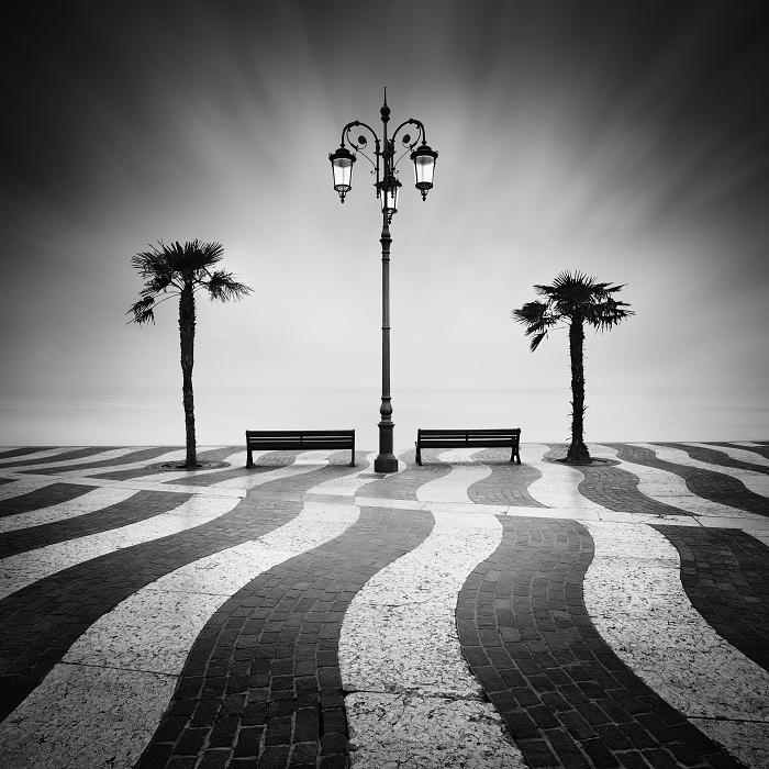 Одинокие пальмы. Автор: Daniel Rericha.