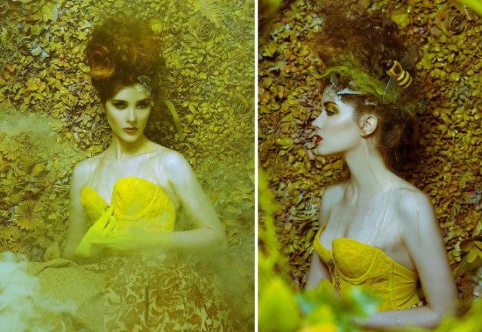Желтая королева. Фото Daniela Majic.