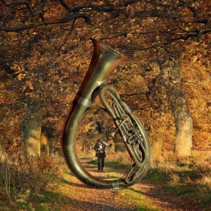 Осенняя мелодия. Автор: Dariusz Klimczak.