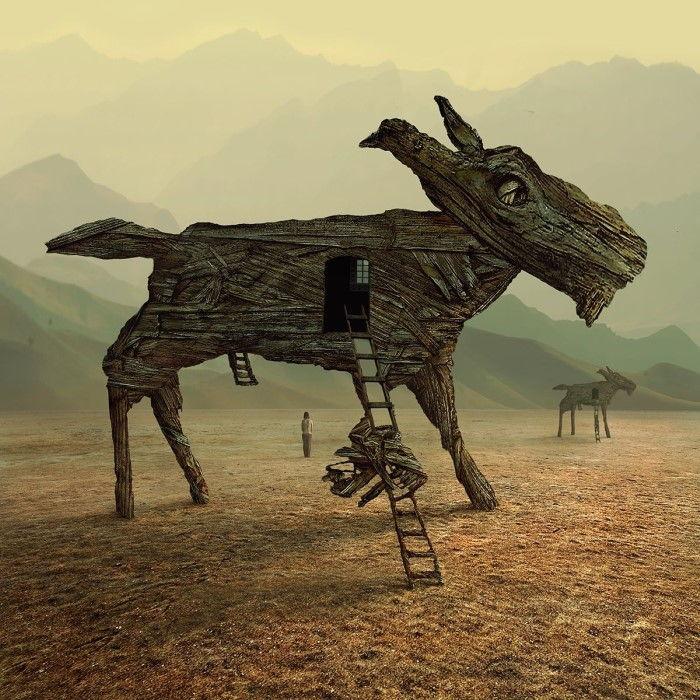 Скрываясь ото всех. Автор: Dariusz Klimczak.
