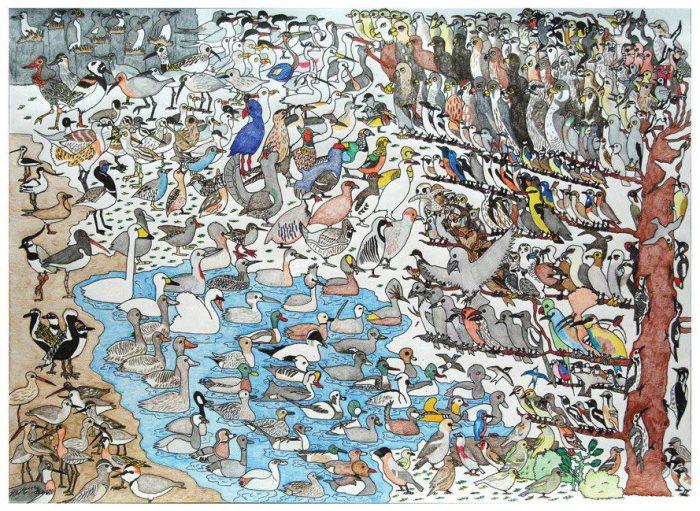 Птицы. Автор: David Barth.