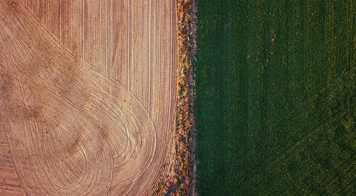 При первом взгляде, если не знать, где и когда сделаны эти фотографии, это завораживающие абстрактные снимки с самым неожиданным сочетанием цветов. Автор: David Gray.