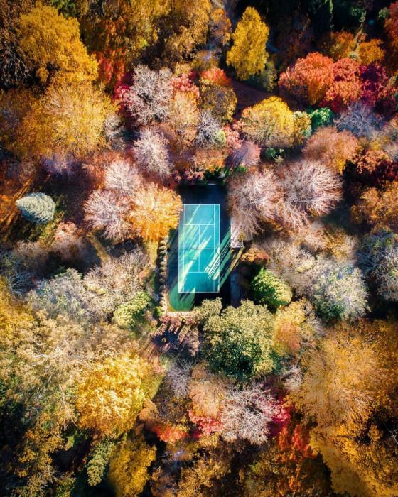 Осень. Автор: Demas Rusli.