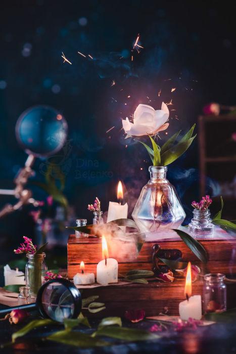 Цветок папоротника. Автор: Дина Беленко.