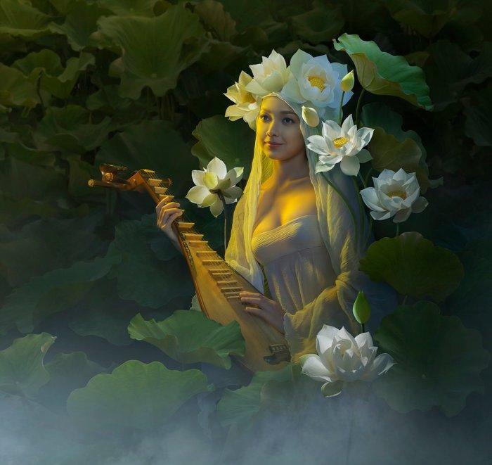 Песни о белом лотосе. Автор: Duong Quoc Dinh.