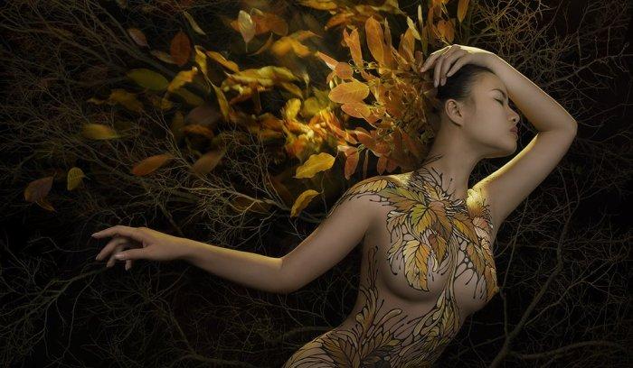 Осенняя листва. Автор: Duong Quoc Dinh.