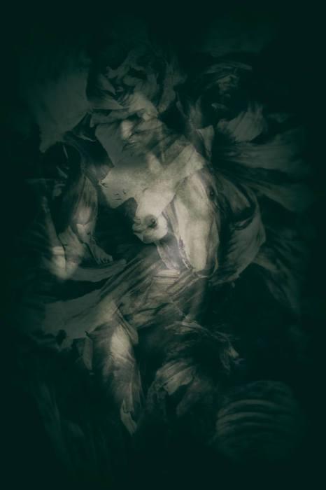 Красота женского тела в работах Эдмонда Тхоменна (Edmond Thommen).