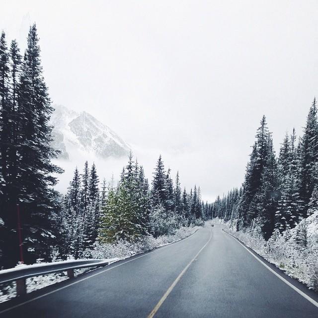 Дорога ведущая в даль. Автор фото: Ээлко Рус (Eelco Roos).