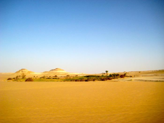 Оазис Сива. Египет.