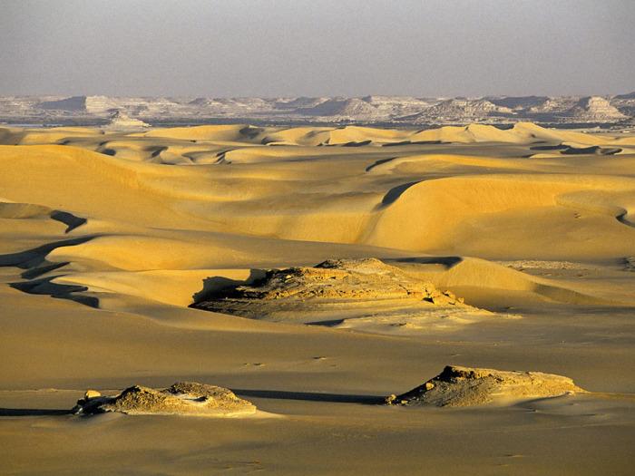 Желтые пески. Оазис Сива. Египет.