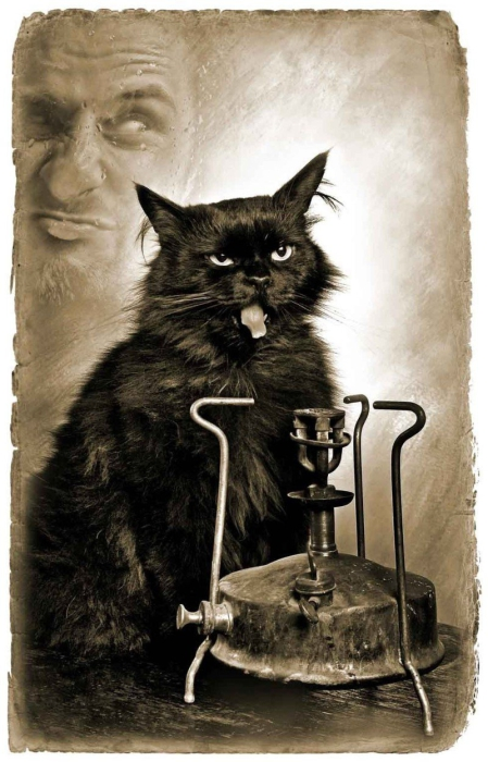 Кот из мастера и маргариты как звали