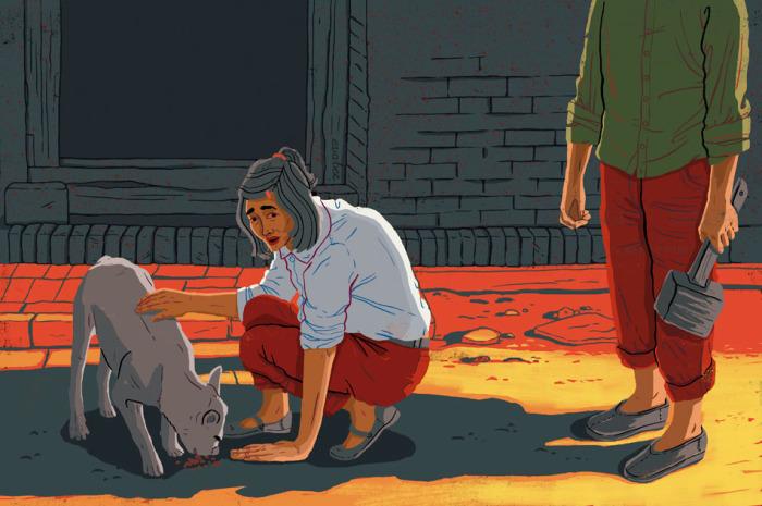 Забота о бездомных животных...? Автор: Eva Bee.