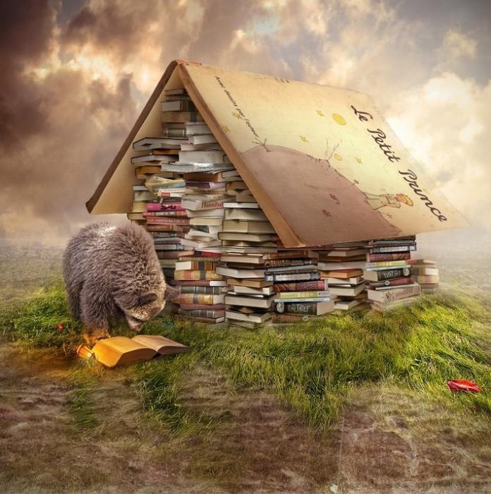Книжные истории. Автор: Even Liu.