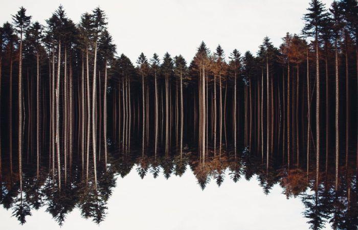 Природные просторы. Автор: Marc Leppin.