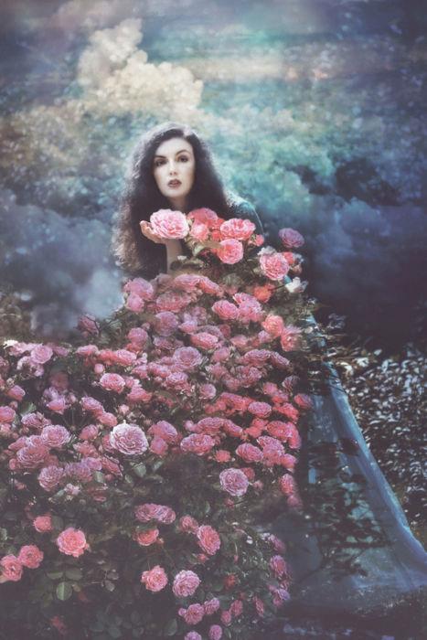 Розовый рай. Автор: Ezo Oneir.
