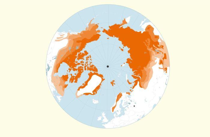 Вечная мерзлота (изображённая оранжевым цветом) в изобилии встречается в Северном полушарии. \ Фото: rferl.org.