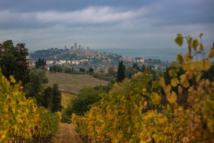 Тоскана – область в центральной части Италии. \ Фото: booking.com.