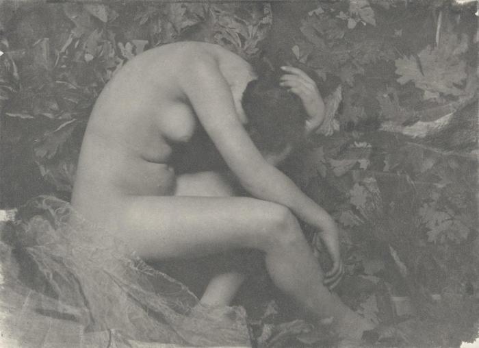 Кузнечик, 1901 год. Автор: Frank Eugene.