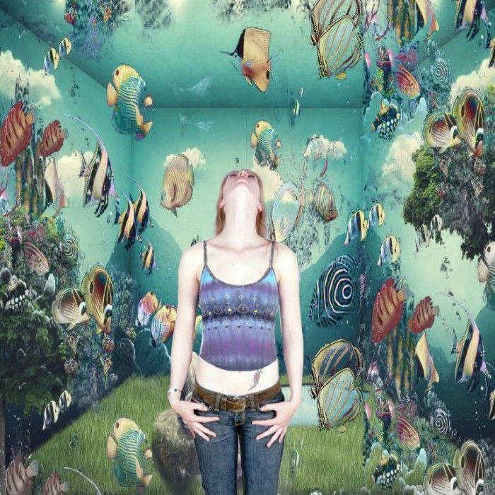 Аквариумные рыбки. Автор: Geert Lemmers.