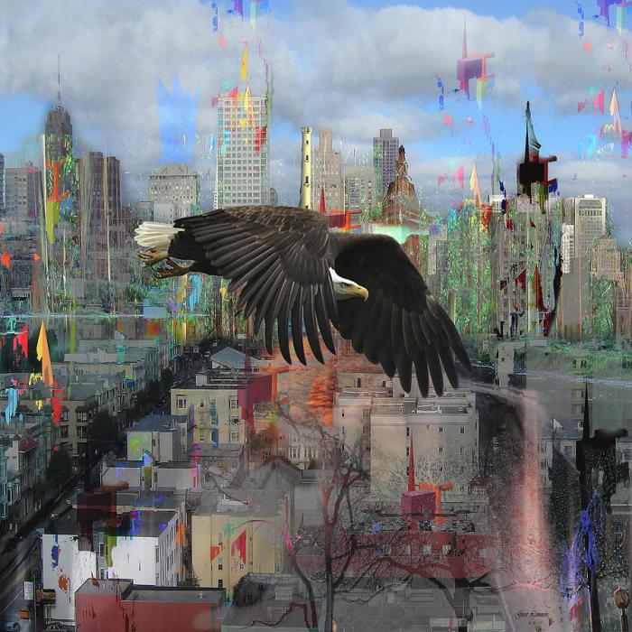 Городской пейзаж с птицей. Автор: Geert Lemmers.