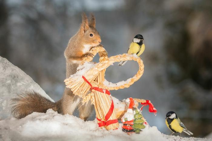 Новогодняя встреча. Автор: Geert Weggen.