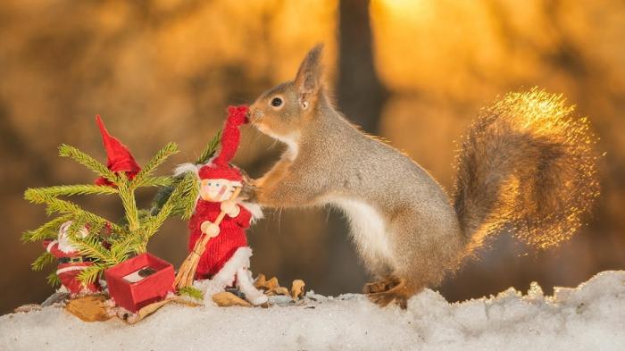 Рождественское настроение. Автор: Geert Weggen.
