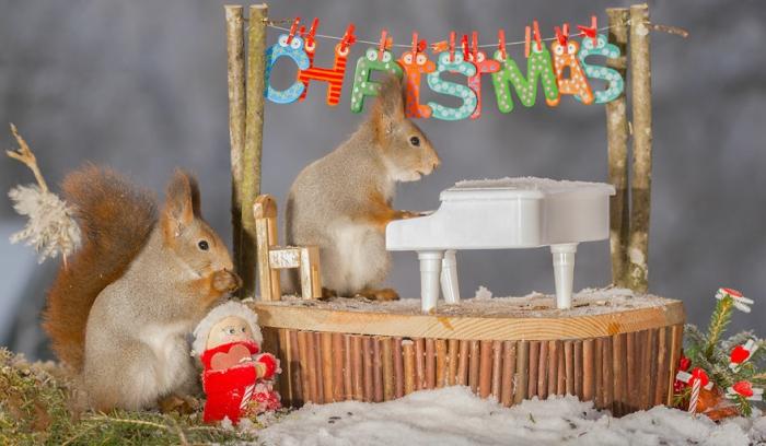 Рождественский концерт. Автор: Geert Weggen.