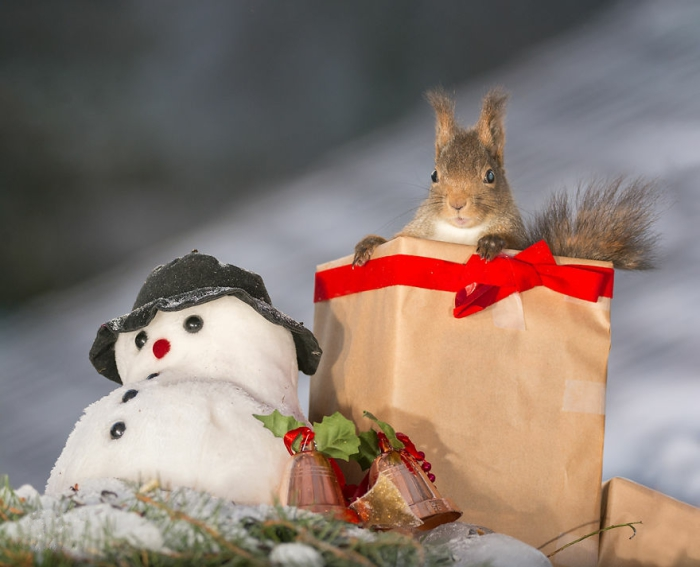 Подарок на рождество. Автор: Geert Weggen.