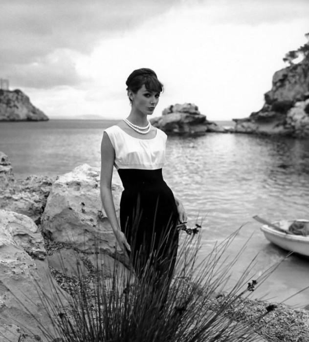 Чёрное и белое. Автор: Georges Dambier.