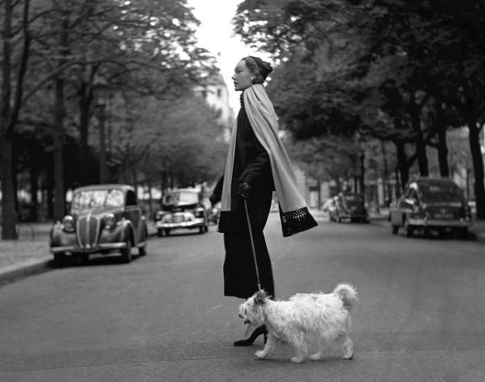 Дама с собачкой. Автор: Georges Dambier.